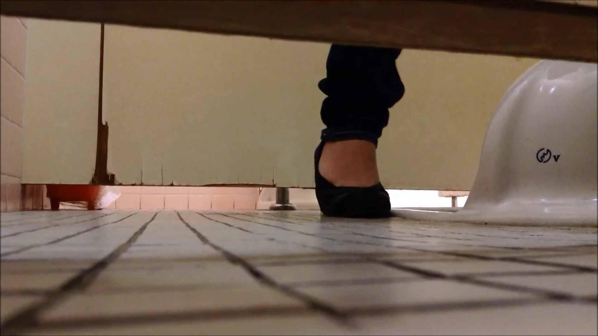 アダルトエロ動画|某有名大学女性洗面所 vol.06|怪盗ジョーカー