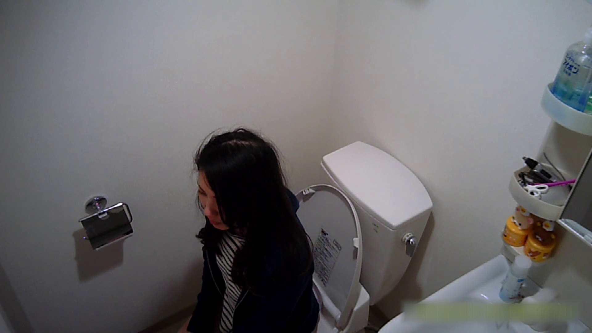 アダルトエロ動画|清楚な顔してかなり敏感なE子25歳(仮名)Vol.04 トイレ編|怪盗ジョーカー