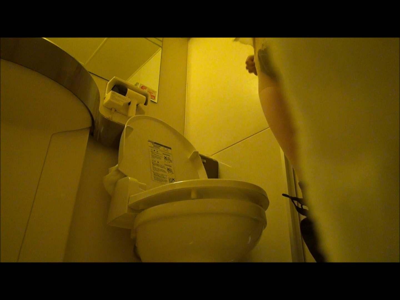 アダルトエロ動画|vol.56 【KTちゃん】現役JD居酒屋アルバイト 5回目?洗面所|怪盗ジョーカー
