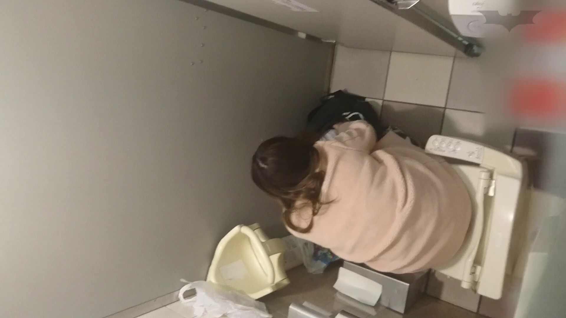 アダルトエロ動画|化粧室絵巻 ショッピングモール編 VOL.10|怪盗ジョーカー