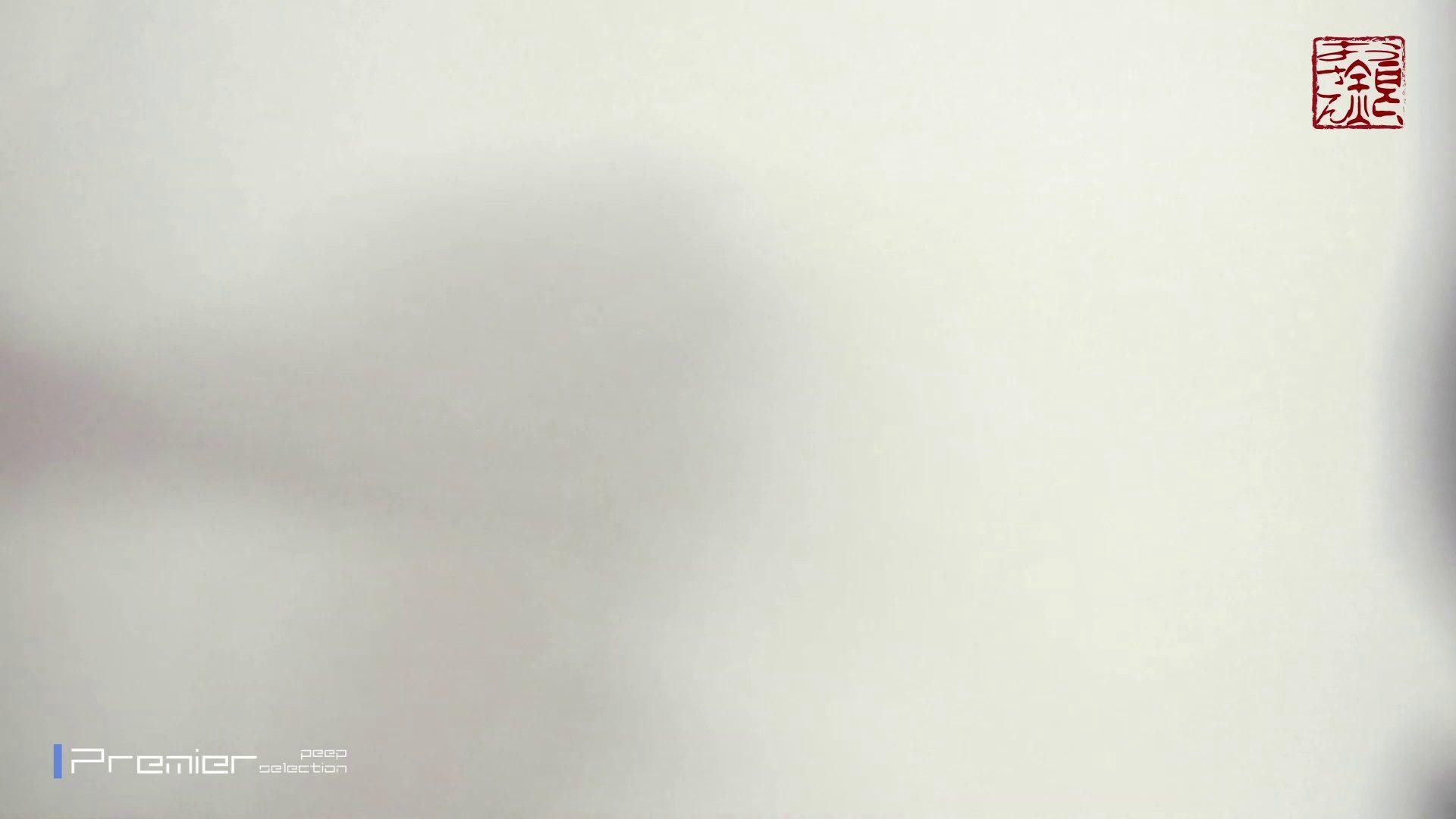 アダルトエロ動画|お銀さんの「洗面所突入レポート!!」Nol.7|怪盗ジョーカー