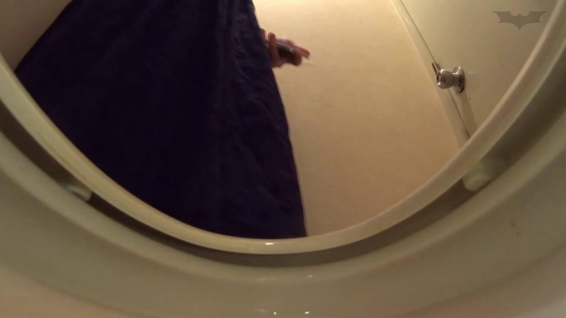 アダルトエロ動画 vol.06[洗面所]実はコレが目的でした。 怪盗ジョーカー