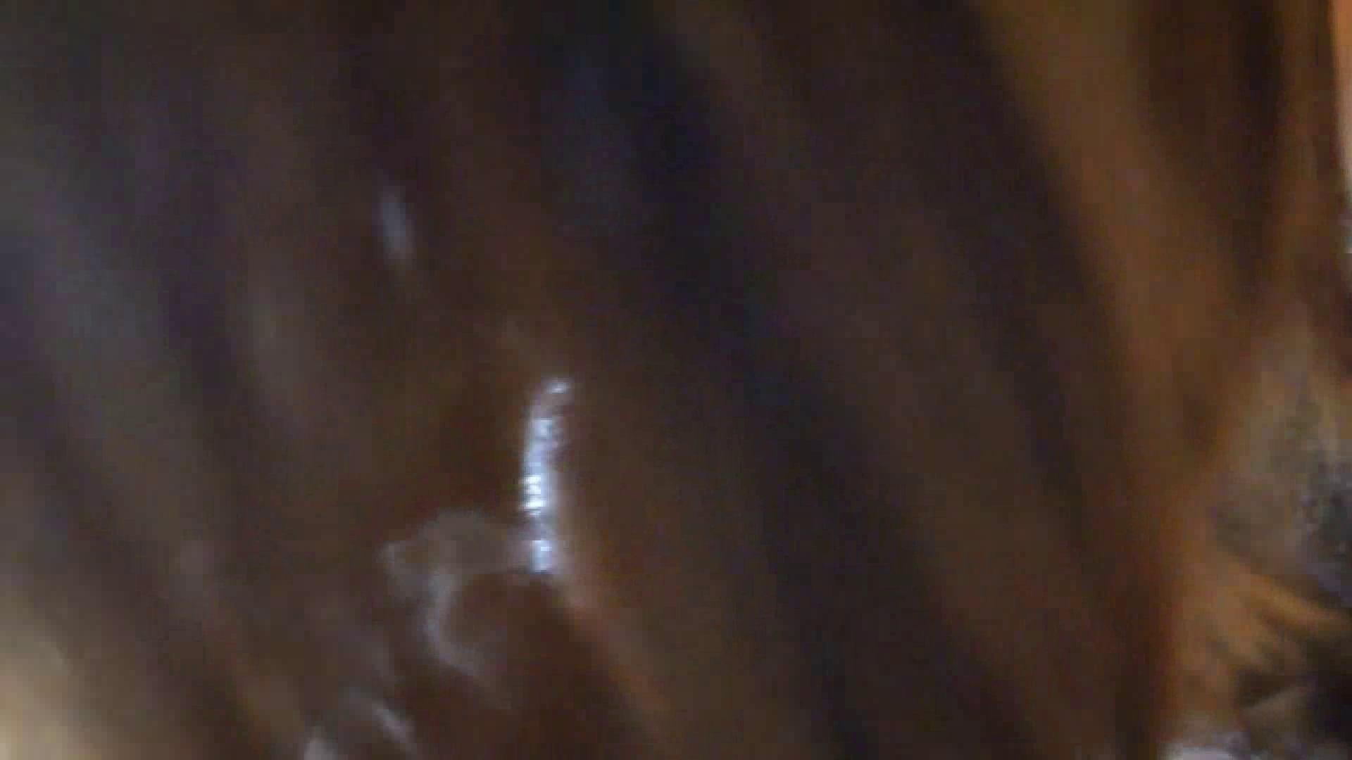 アダルトエロ動画|ハメ撮り天国 Vol.2 前編|大奥