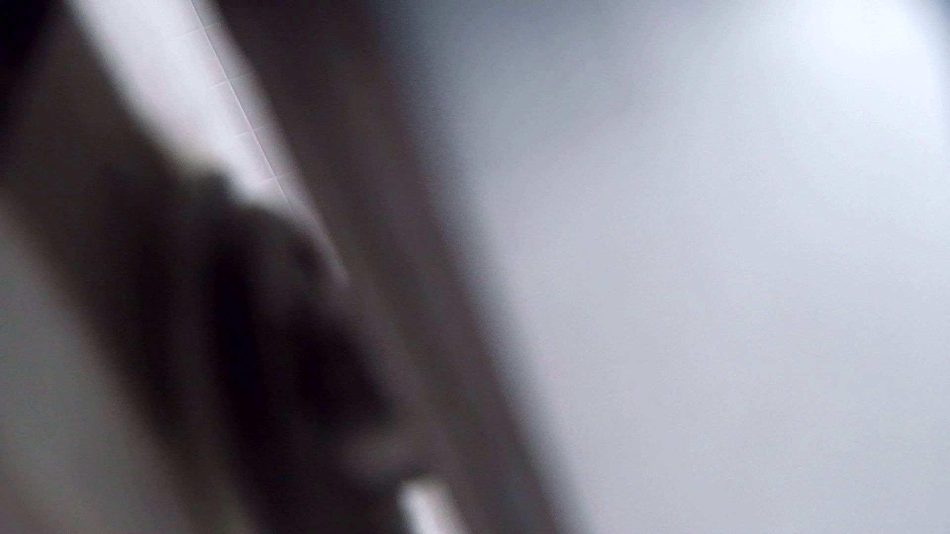アダルトエロ動画|vol.05 命がけ潜伏洗面所! いざ追い撮り!!|ピープフォックス(盗撮狐)