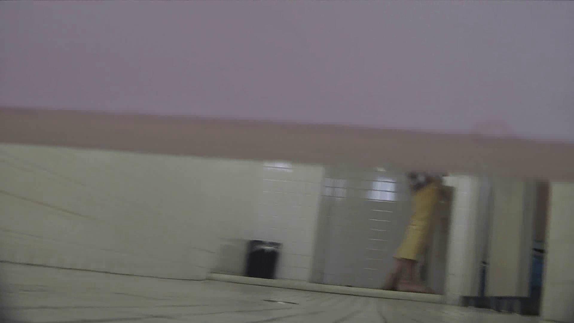 アダルトエロ動画 vol.29 命がけ潜伏洗面所! 粒ぞろい ピープフォックス(盗撮狐)