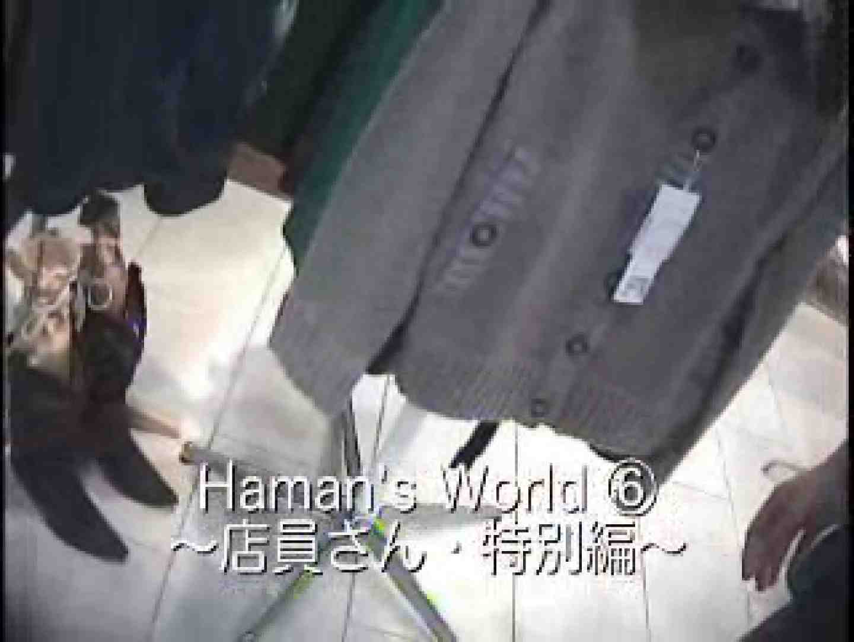 アダルトエロ動画|Hamans World ⑥店員さん編Ⅳ フリマ編Ⅱ|ピープフォックス(盗撮狐)