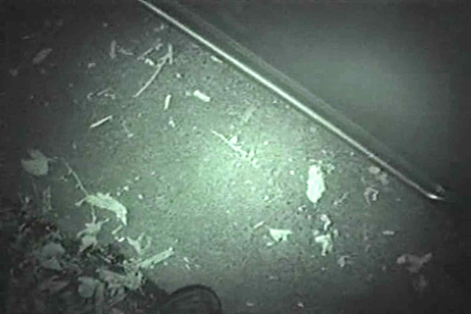 アダルトエロ動画|MASAさんの待ち伏せ撮り! 赤外線カーセックスVol.13|ピープフォックス(盗撮狐)