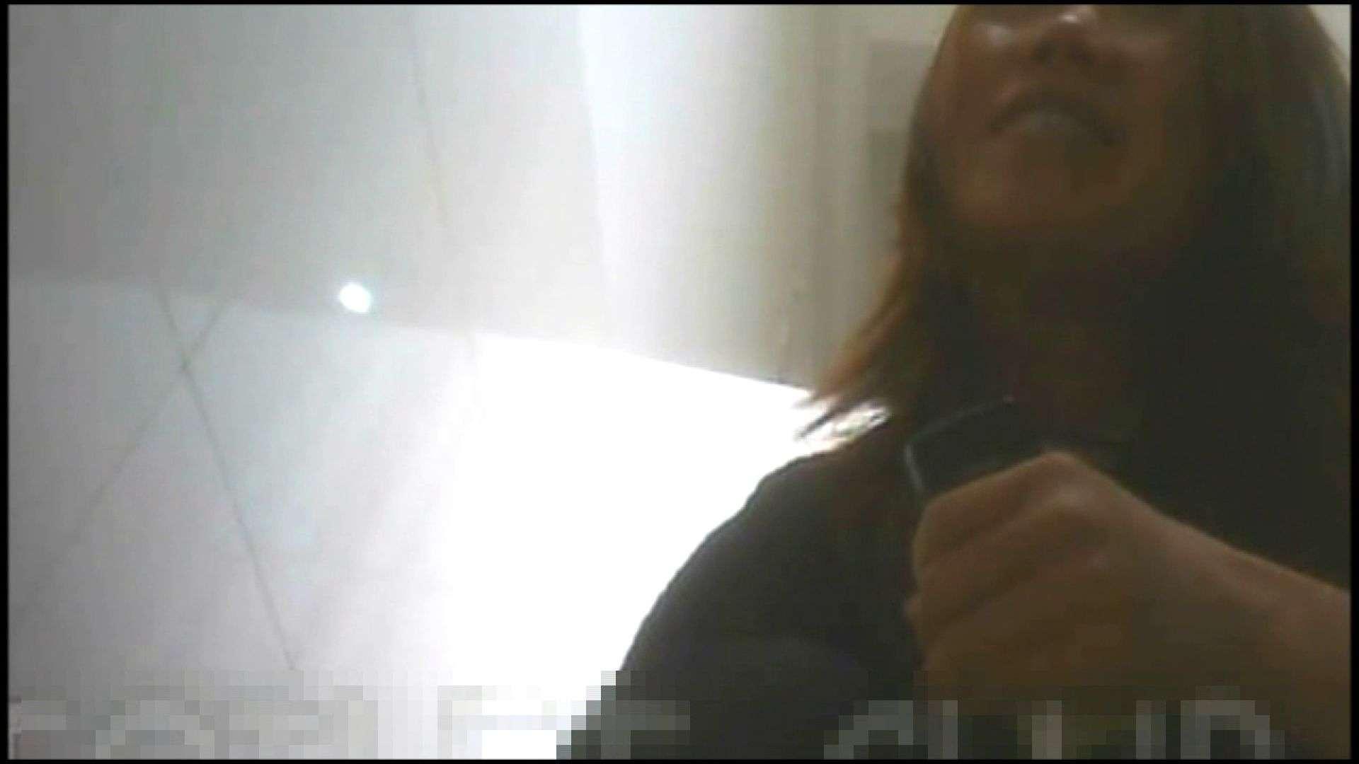 アダルトエロ動画 洗面所で暗躍する撮師たちの潜入記Vol.13 ピープフォックス(盗撮狐)