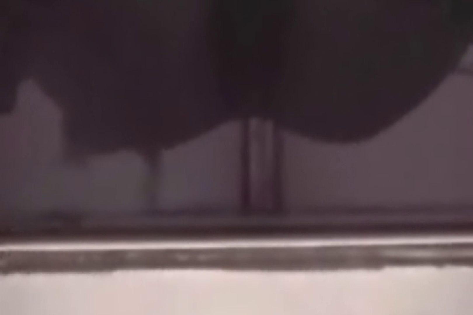 アダルトエロ動画|洗面所で暗躍する撮師たちの潜入記Vol.38|ピープフォックス(盗撮狐)